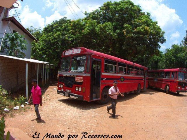 Srilanka sri lanka bus autobus travel india