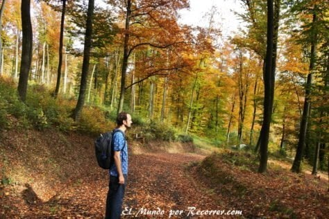 Camino Mühlweg en otoño