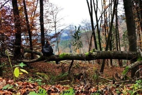 Subiendo a la montaña Smorna