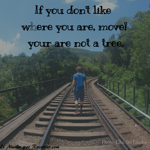 Citas Viajar Travel quote Frases motivacion wanderlust if you dont like where you are move you are not a tree