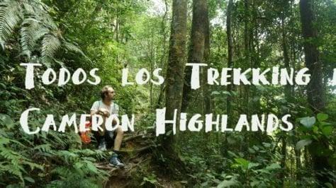 Cameron Highlands Guia trekking