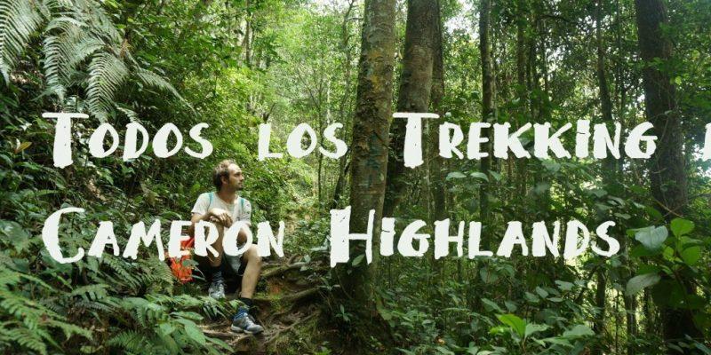 La Guía Completa de Trekking de Cameron Highlands
