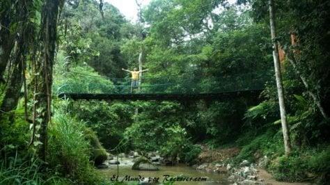 Cameron Highlands junggle trekking puente colgante