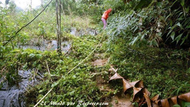 Cameron Highlands junggle trekking trail  lluvia