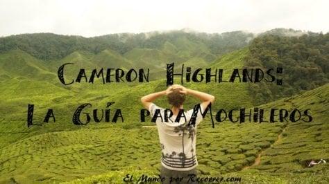 Cameron Highlands te guia mochileros
