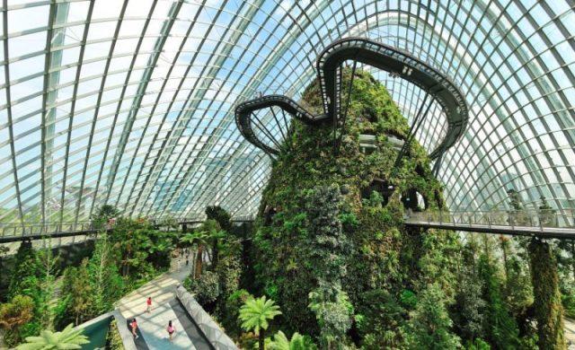 singapur Cloud Forest y Flower Bone