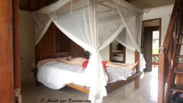 Bali Ubud gunung merta aribnb