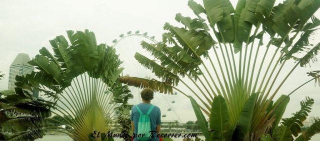 Singapur noria parque