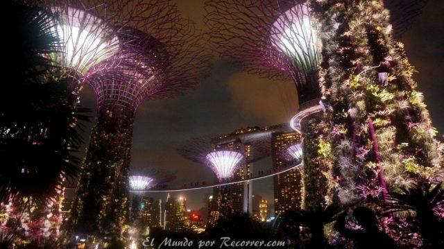 Singapur parque