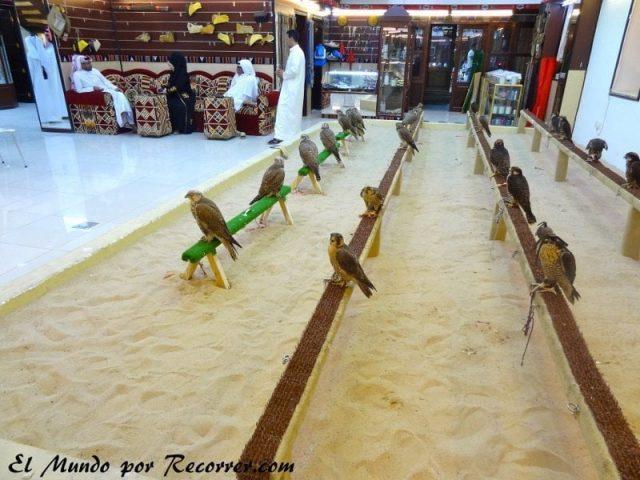 souq falcon alcones tienda qatar doha