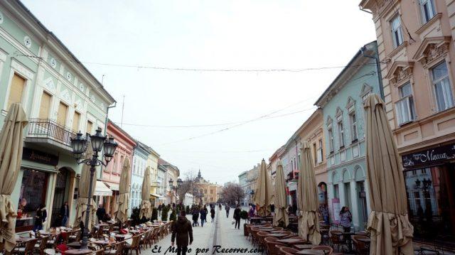 Novi sad danubio street