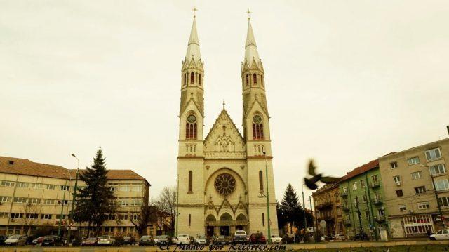 timisoara catedral catolica