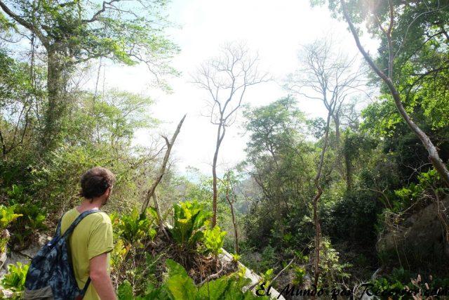 parque natural tayrona low