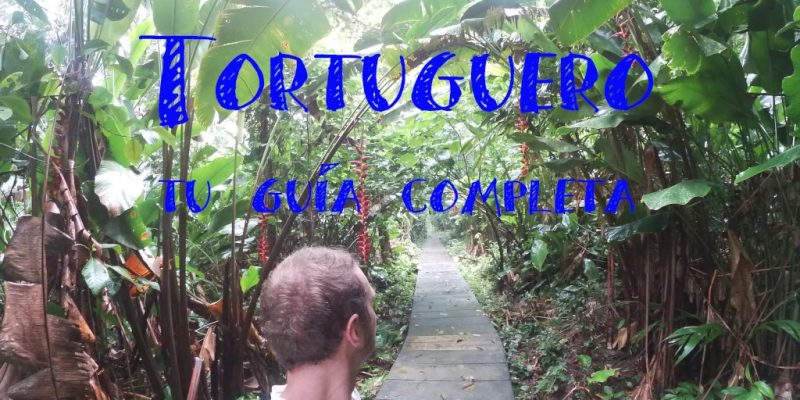 Tortuguero costa rica cerro subir al guia completa de como llegar en barco y que hacer