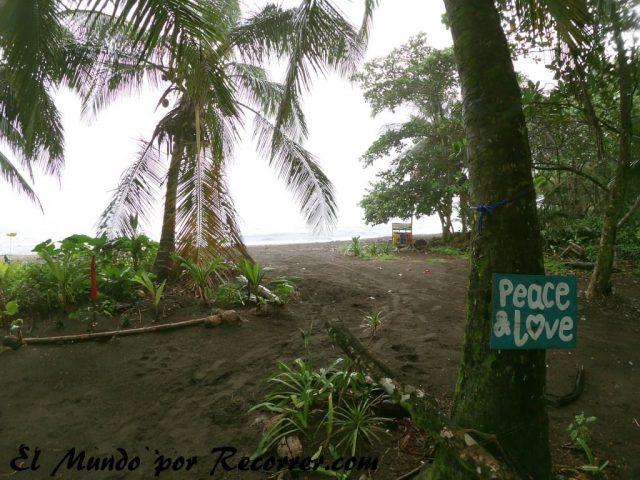 tortuguero playa costa rica