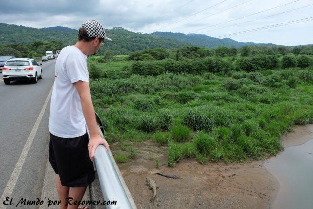 Jaco costa rica puente cocodrilos rio tarcoles