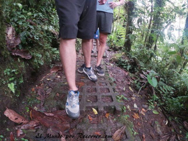 Monteverde San Carlos Costa Rica